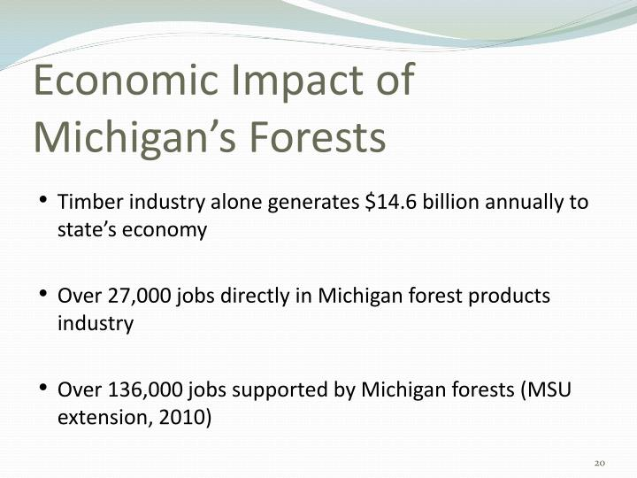 Economic Impact of Michigan's Forests