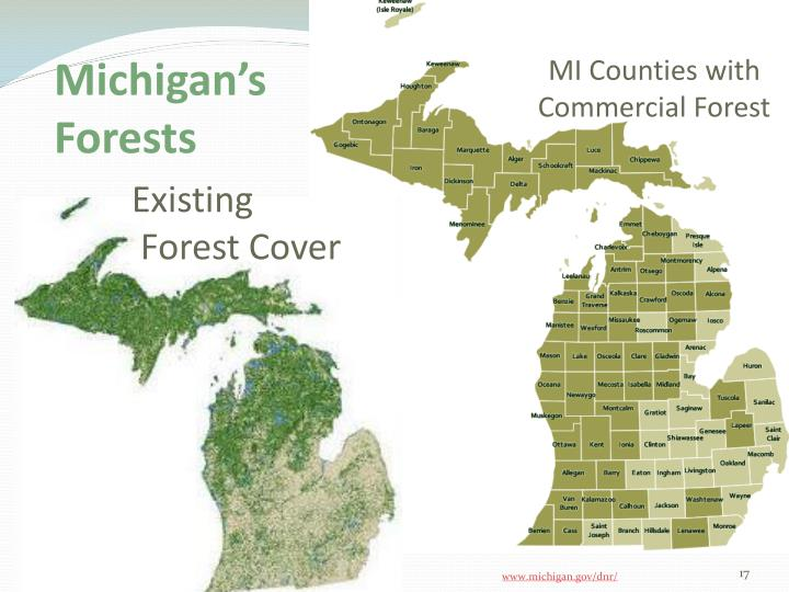 MI Counties with Commercial Forest