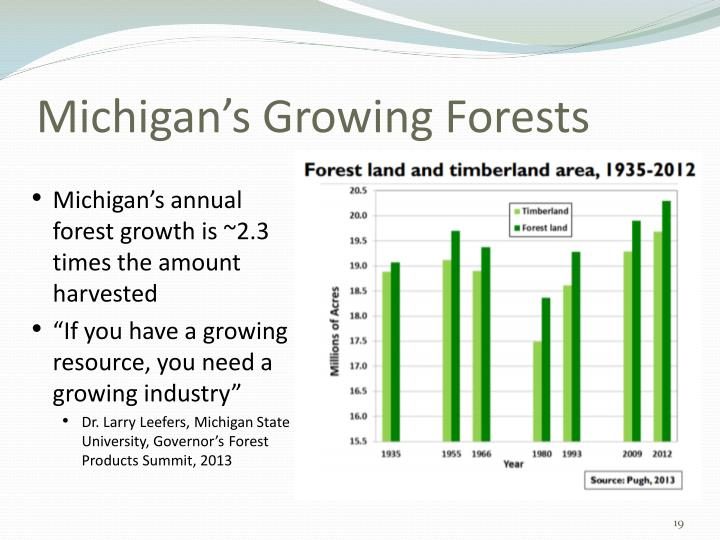 Michigan's Growing Forests