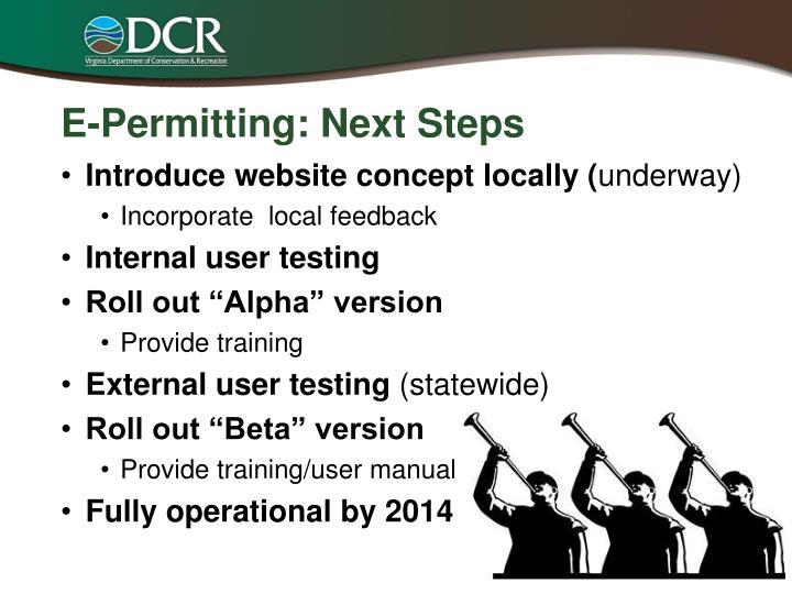 E-Permitting: Next Steps