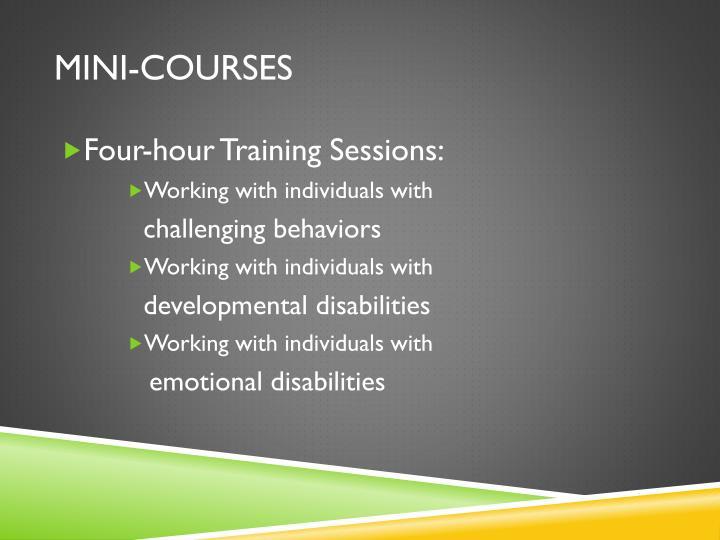 Mini-Courses