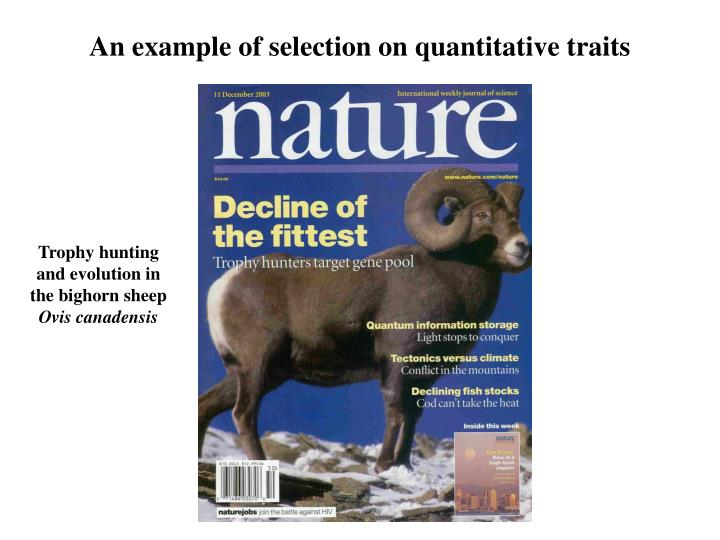Difference Between Fitness And Natural Selection