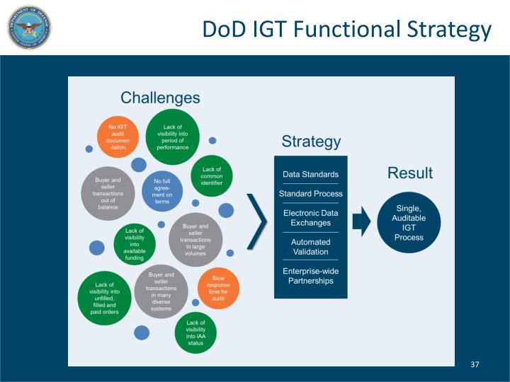 DoD IGT Functional Strategy