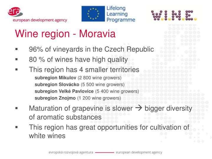 Wine region - Moravia
