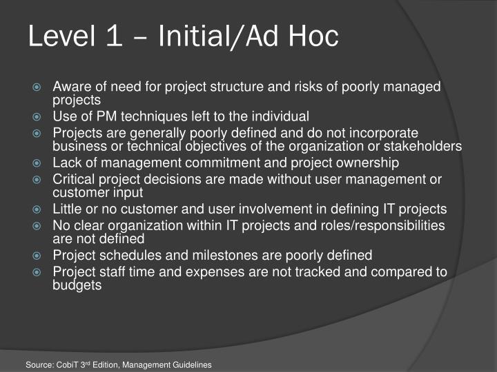 Level 1 – Initial/Ad Hoc