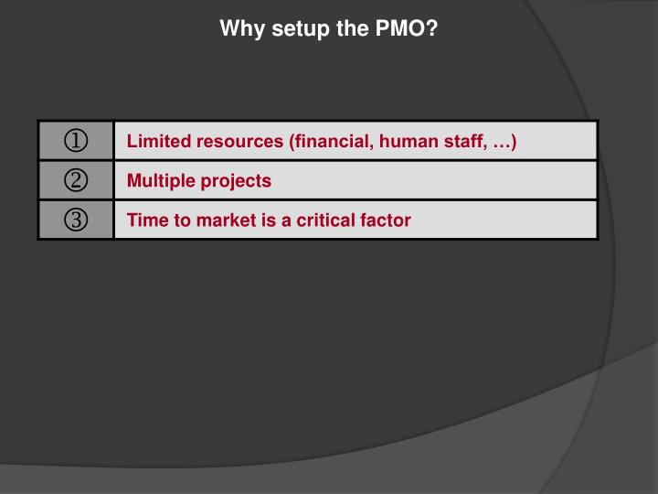 Why setup the PMO?