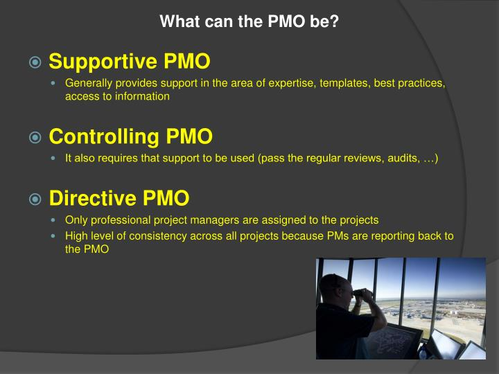 What can the PMO be?