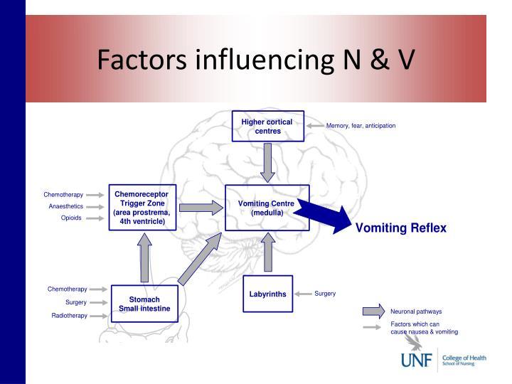 Factors influencing N & V
