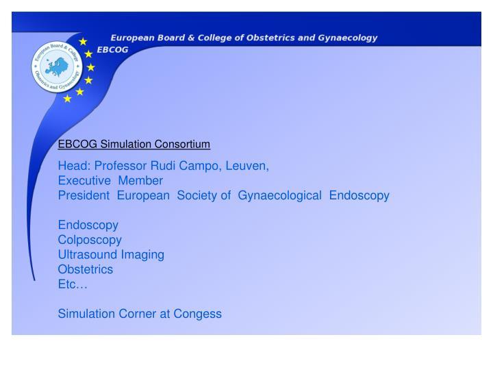 EBCOG Simulation Consortium