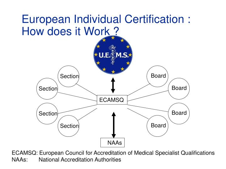 European Individual