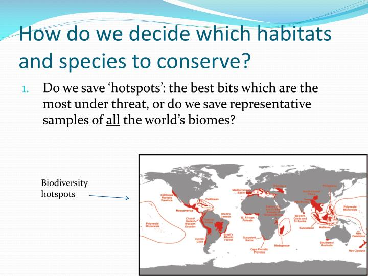 How do we decide which habitats and species to conserve?