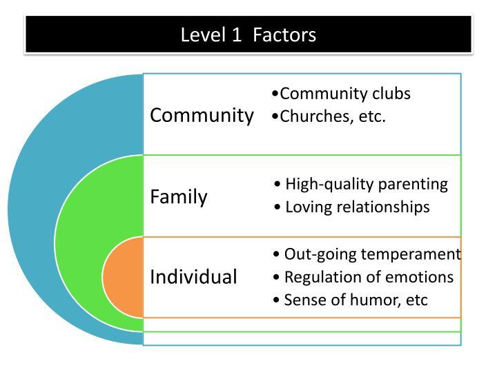 Level 1  Factors