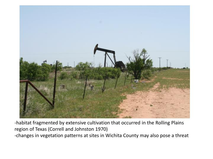 -habitat fragmented by extensive cultivation that occurred in the Rolling Plains region of Texas (