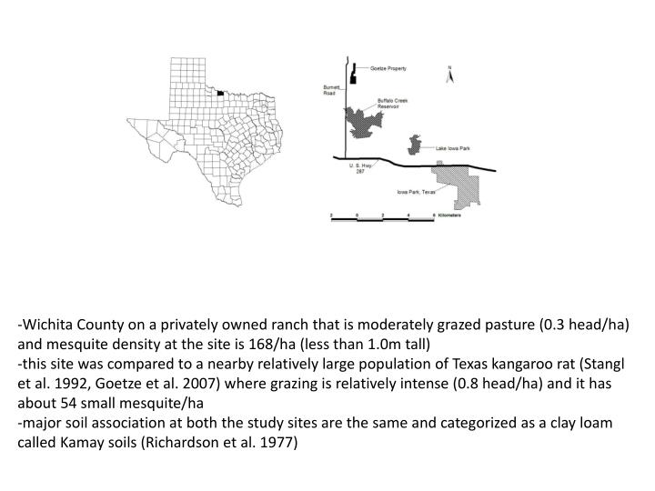 -Wichita County on a privately owned ranch that is moderately grazed pasture (0.3 head/ha) and mesquite density at the site is 168/ha (less than 1.0m tall)