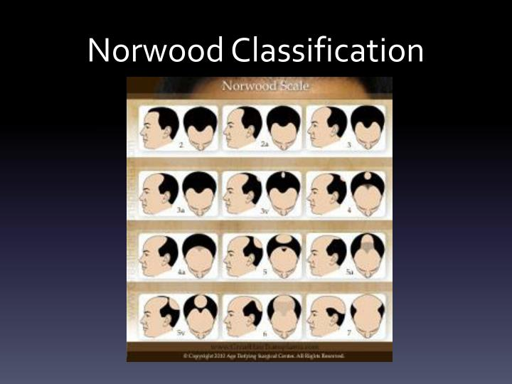 Norwood Classification