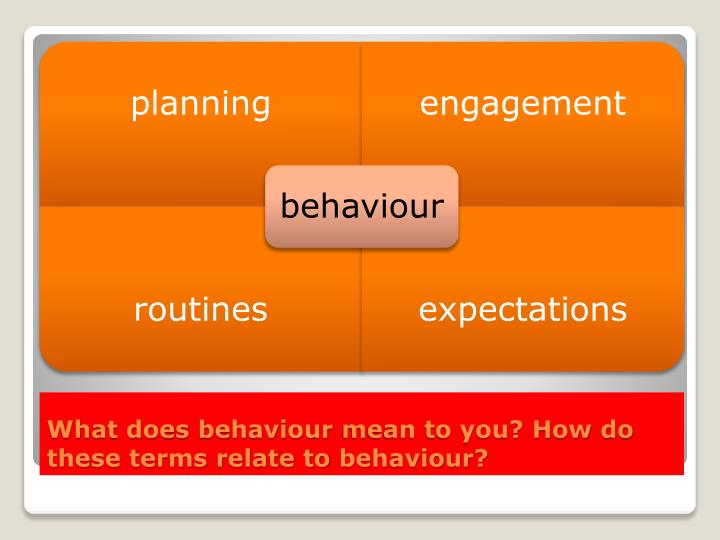 What does behaviour mean to you how do these terms relate to behaviour