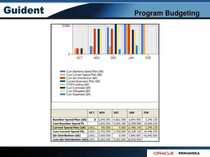 Program Budgeting