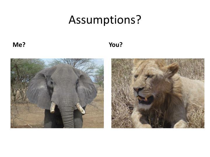 Assumptions?