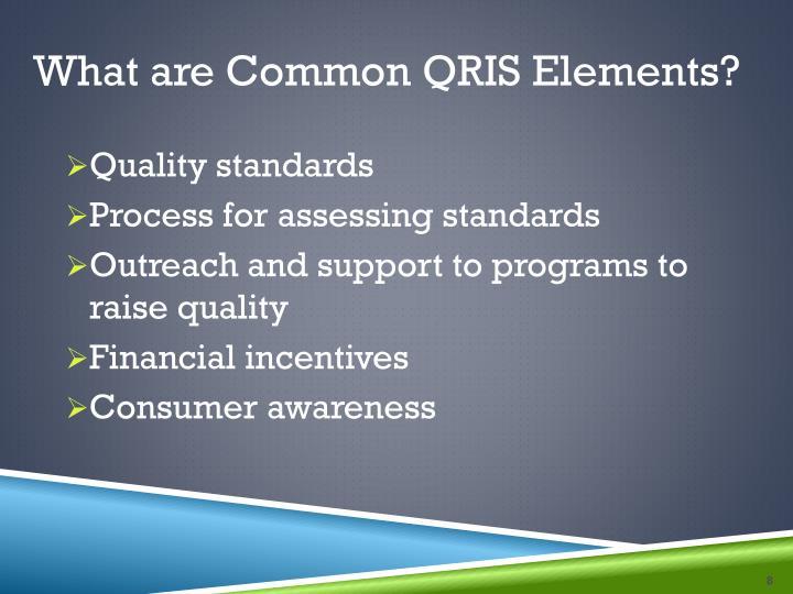 What are Common QRIS Elements?