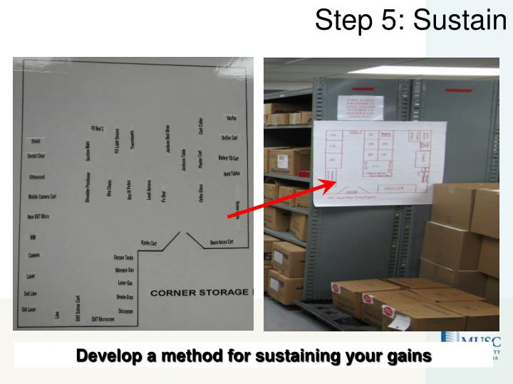 Step 5: Sustain