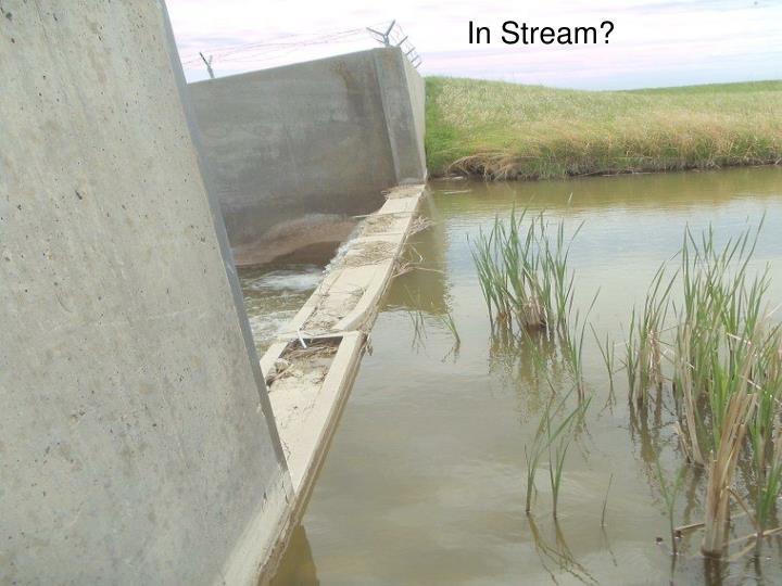 In Stream?