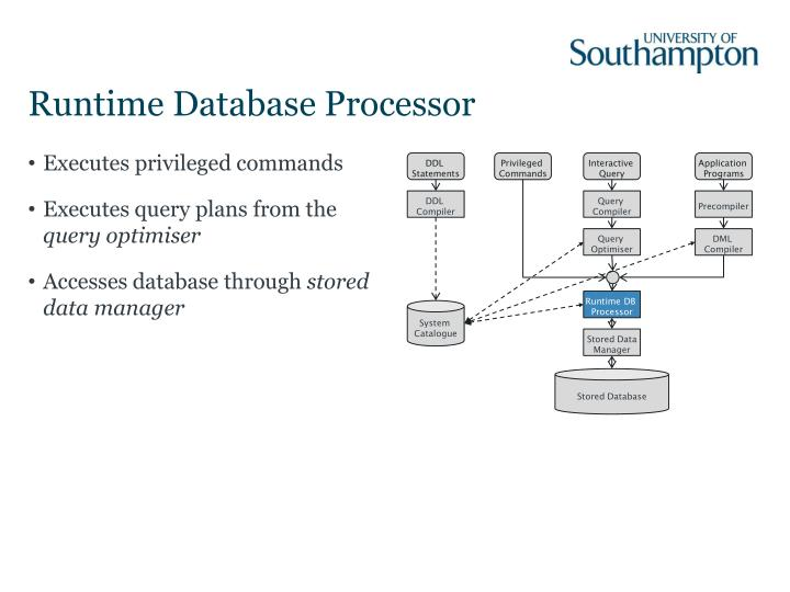 Runtime Database Processor
