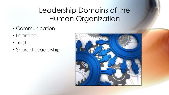 Leadership Domains of the