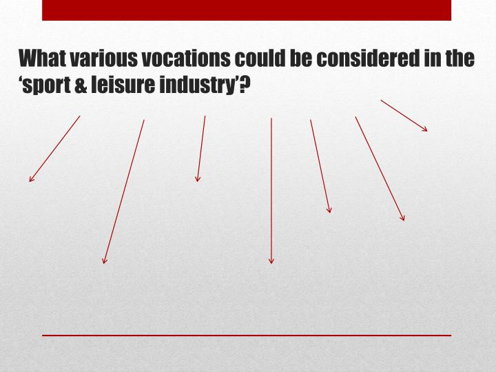What various vocations could be considered in the 'sport & leisure industry'?