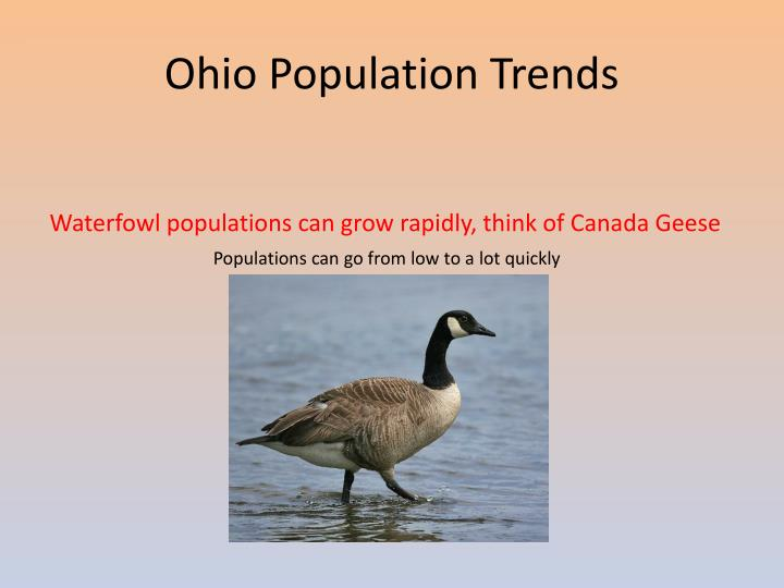 Ohio Population Trends