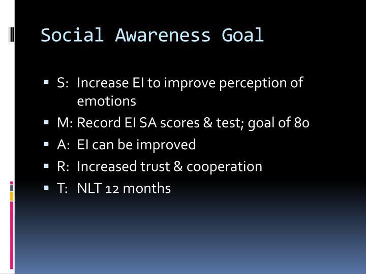 Social Awareness Goal