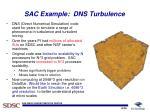 sac example dns turbulence