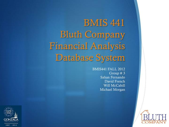 Bmis 441 bluth company financial analysis database system
