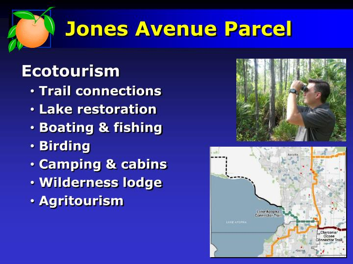 Jones Avenue Parcel