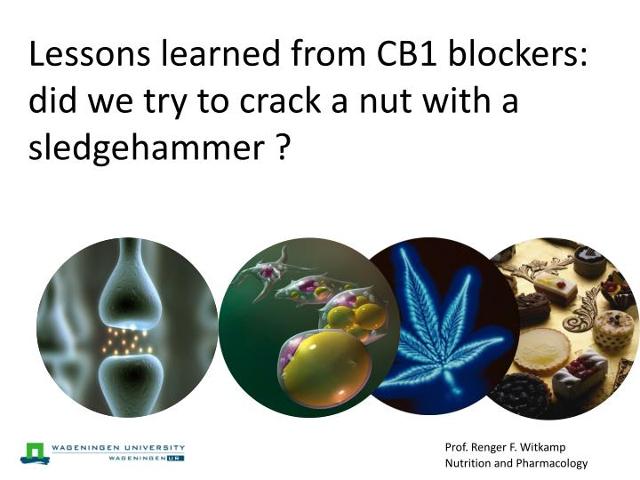 Lessons learned from CB1 blockers: