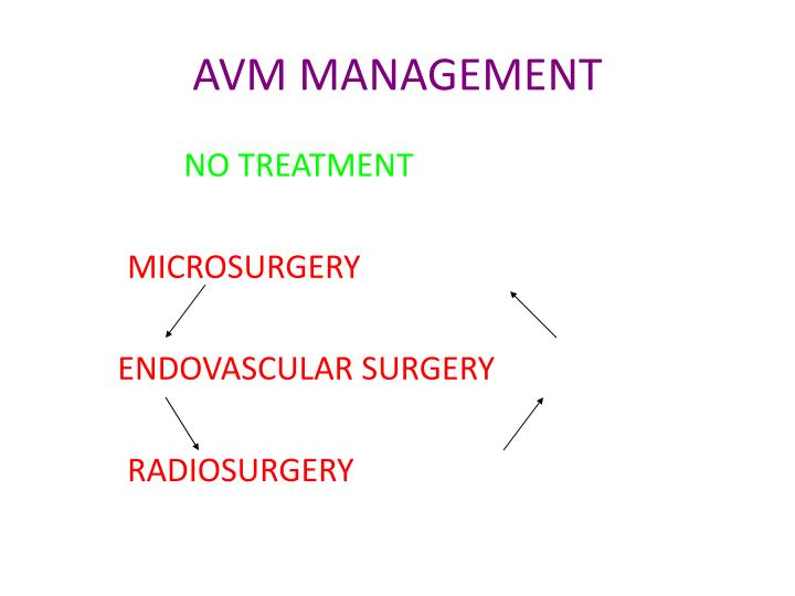 AVM MANAGEMENT