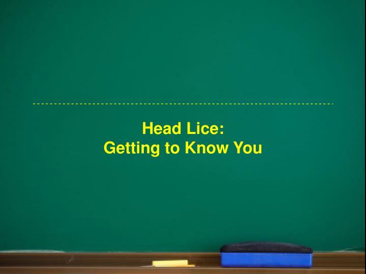 Head Lice: