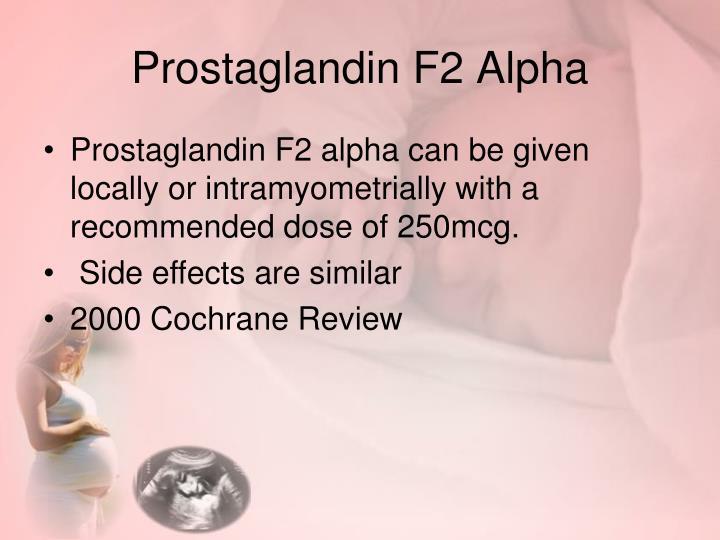 Prostaglandin F2 Alpha