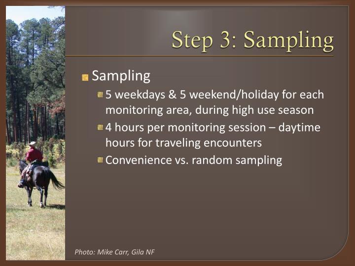 Step 3: Sampling