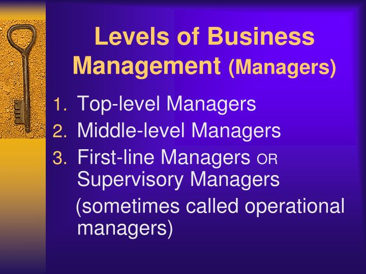 Levels of Business Management