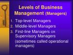 levels of business management managers