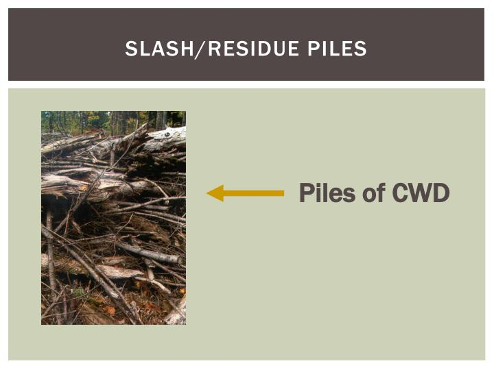 Slash/residue Piles