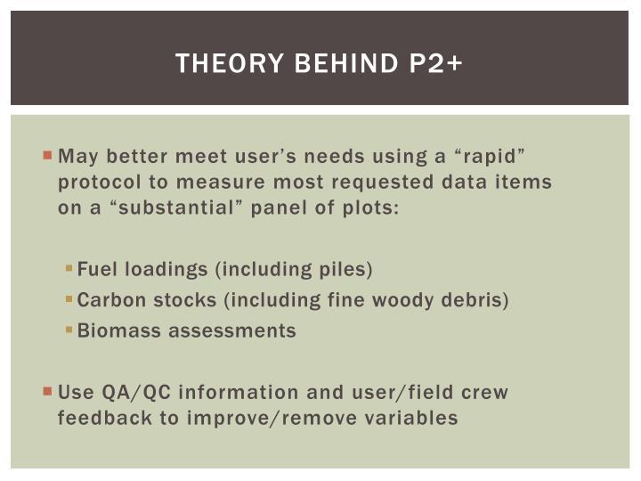 Theory Behind P2+