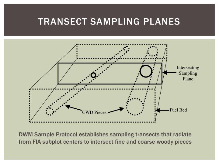 Transect Sampling Planes