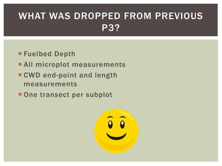 What was Dropped from previous p3?