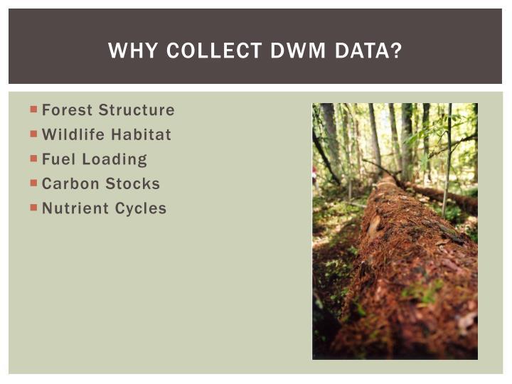 Why collect dwm data