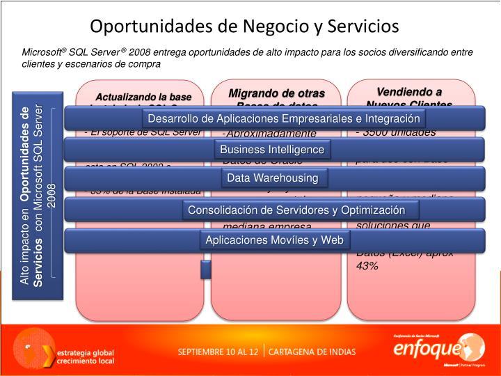Oportunidades de Negocio y Servicios