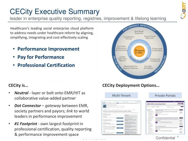 CECity Executive Summary