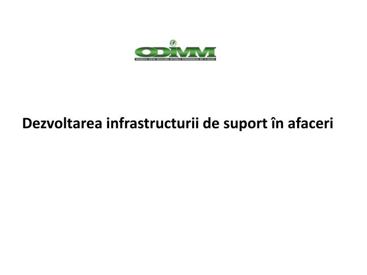 Dezvoltarea infrastructurii de suport în afaceri