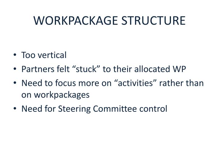 WORKPACKAGE STRUCTURE