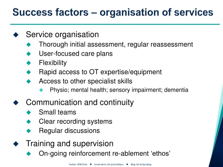 Success factors – organisation of services